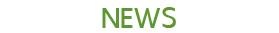 Website BeeBrand 02082016 RGB News